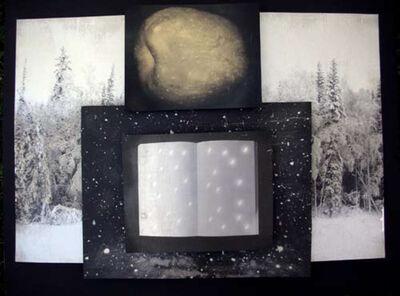 Melanie Walker, 'Snow Apple', 2011