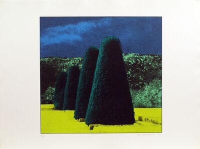 Ivor Abrahams, 'The Garden Suit (Four Bushes)', 1970