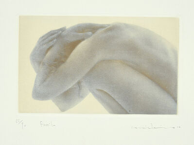 Unknown, 'Fossil', 20th Century