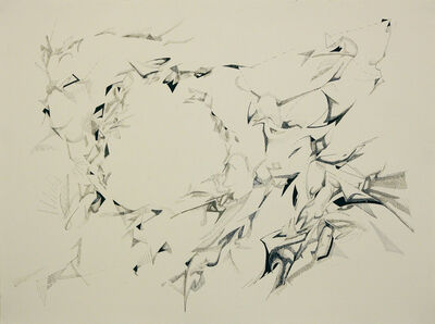 Gianluca Bianchino, 'Murmurations #5', 2014