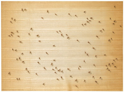 Ed Ruscha, 'Cockroaches (from Insects Portfolio)', 1972