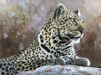 Pip McGarry, 'Leopard Portait', 2011