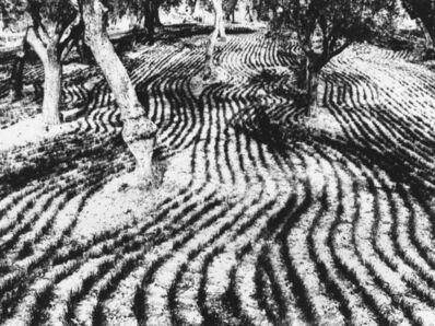 Mario Giacomelli, 'Paesaggio', 1970