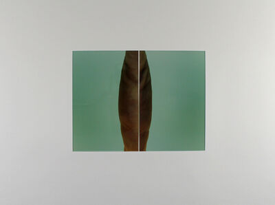 Thomas Florschuetz, 'o.T. - Diptychon Nr. 31', 1992