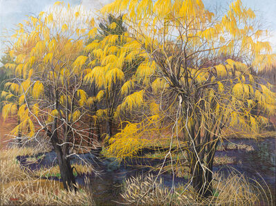 Anne Lyman Powers, 'Vernal Pool with Willows', 2003
