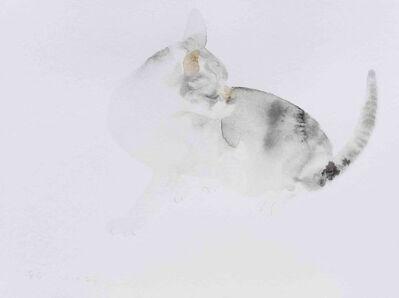 Wang Yuping, 'Cat 2', 2018