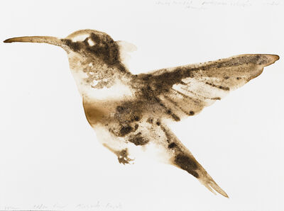 Alexis Rockman, 'Ruby-Throated Hummingbird (Archilochus colubris)', 2014