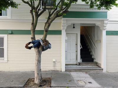 Lee Materazzi, 'Trees', 2017