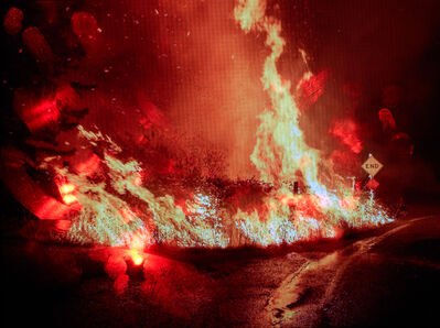 Tabitha Soren, 'westernjournal.com/california-highway-fire-shutdown/ [Shasta Trinity National Forest, 2018] Courtesy Josh Edelson / Getty', 2019