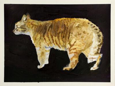 Yosuke Kobashi, 'Cat', 2013