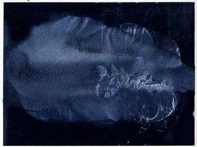 Aurore de La Morinerie, 'Plankton 1', 2015
