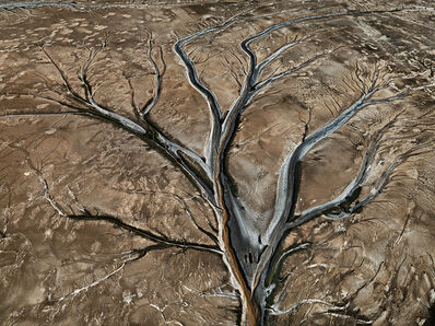 Edward Burtynsky, 'Colorado River Delta #12', 2011
