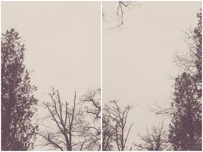 Martina+Reem, 'Bruises to ashes 02', 2016