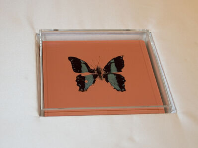 Damien Hirst, 'Butterfly Painting', 2005