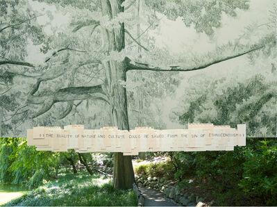 Gabriela Albergaria, '113 (Brooklyn Botanical Garden)', 2016