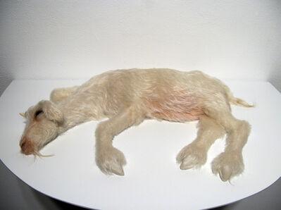 Christy Langer, 'Heavy Head', 2012