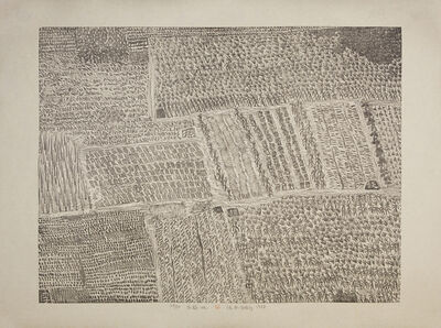 Xu Bing 徐冰, 'Family Plots 庄稼地', 1987