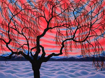 Sharon Ellis, 'Winter Desert Willow', 2016