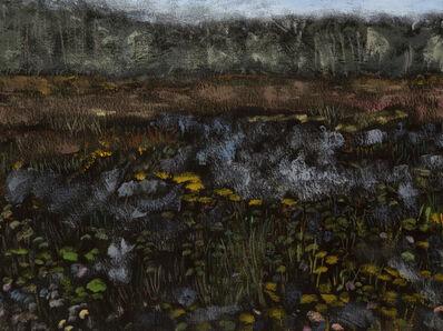 Reggie Burrows Hodges, 'Pace House Lily Pond Horizon', 2019