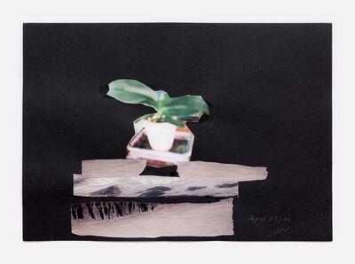 Simone Fattal, 'Flower', 2020
