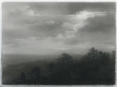 Dozier Bell, 'Pine ridge', 2018