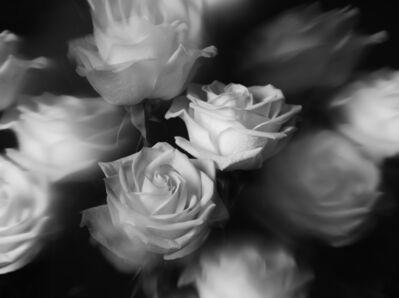 Indira Cesarine, 'Rêver de Roses', 2020