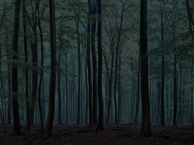 Michael Lange, 'WALD | Landscapes of Memory#0172', 2009