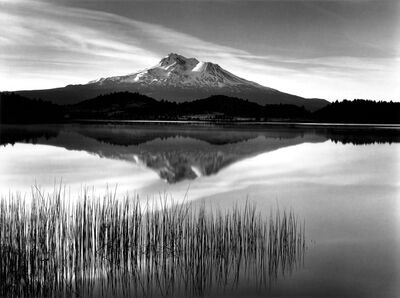 Roman Loranc, 'Tule and Mt. Shasta', 2017