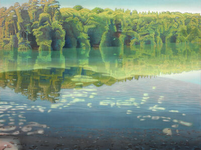 Peter Eckert, ' Licht und Schatten am Stechlinsee I (Light and shadows at the lake Stechlin)', 2005