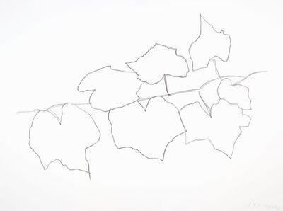 Ellsworth Kelly, 'Wild Grape Leaves II', 2004