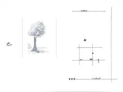 Marie Orensanz, 'Natura, contraste', 2017