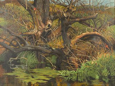 Anne Lyman Powers, 'Willow Swamp', 1989