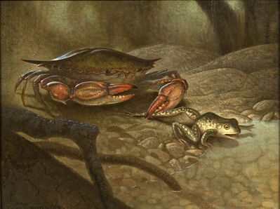 Peter Zokosky, 'Crab and Frog', 2008