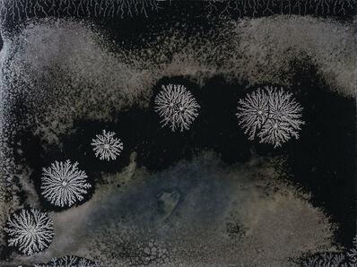 Michael Koerner, 'Phases #4732', 2017
