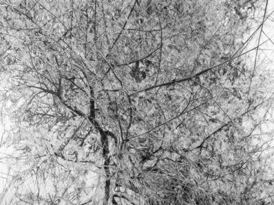 Mirjam Abraas, 'Untitled', 2018