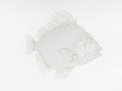 Kwang Ho CHEONG, 'The Fish 1310150', 2013