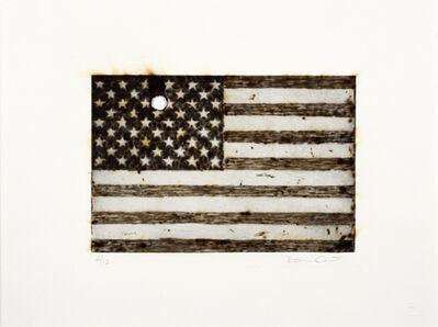 Davide Cantoni, 'American Flag', 2009