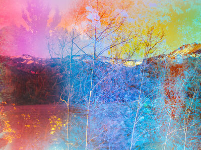 Terri Loewenthal, 'Psychscape 841 (Silver Lake, CA) 2018', 2018