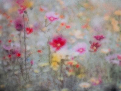 Eliana Marinari, 'Flower Symphony #8', 2019