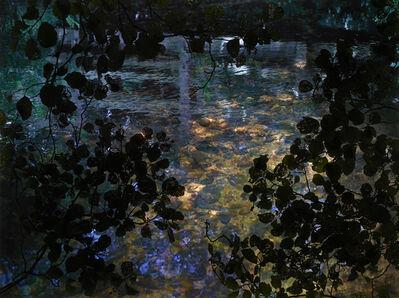 Susan Derges, 'Alder Brook 1', 2011