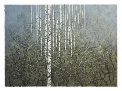 Stéphane Erouane Dumas, 'Brouillard, Forêt', 2018-2019