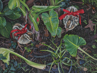 Deborah Poynton, 'Chicks', 2019