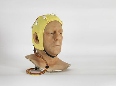 Jan Fabre, 'Do We Feel With Our Brain and Think With Our Heart', 2012