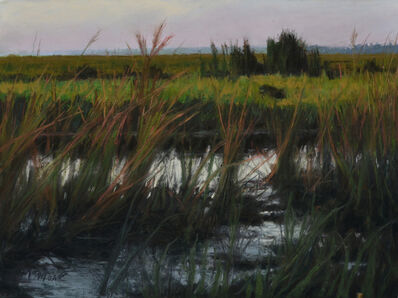 Mary Monk, 'Evening Marsh', 2019