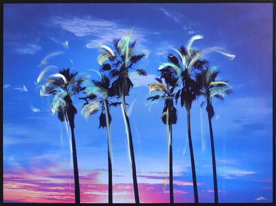 Pete Kasprzak, 'California Blue Palms', 2019