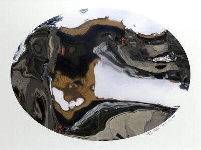 Zhan Wang 展望, 'Flowers in the Mirror, Beijing Series #5', 2004