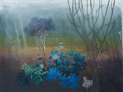 Chitra Merchant, 'DEVAKAD - Wild Nutmeg & Silver Birch(immune boosting trees)', 2020