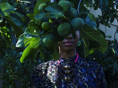 Zohra Opoku, 'Ficus Carica', 2015