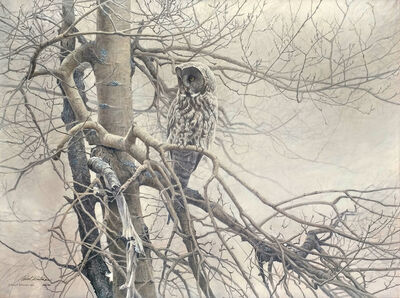 Robert Bateman, 'Ghost of the North - Great Gray Owl', 1983