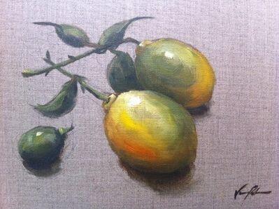 Vanessa Rothe, 'Lemons on Raw Canvas', 2015